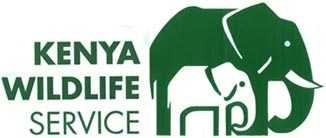 Kenya Wildlife Filming Permit
