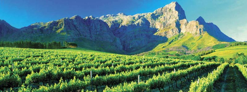 South Africa locations cape winelands