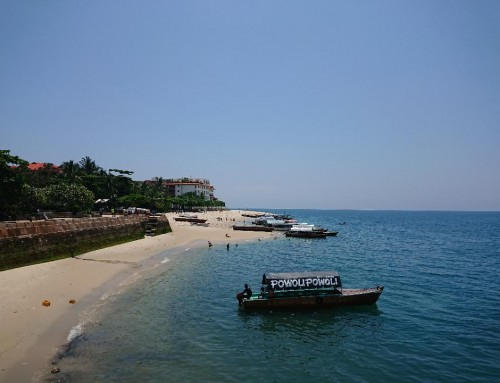 Zesty Zanzibar